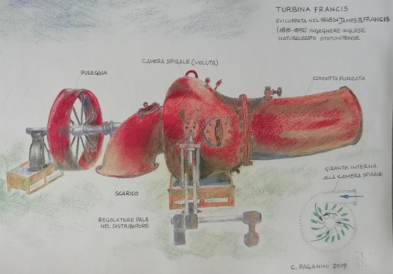 24255museo-turbinafrancisdisegno